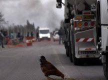 Los rurales vuelven a cortar la Ruta 22
