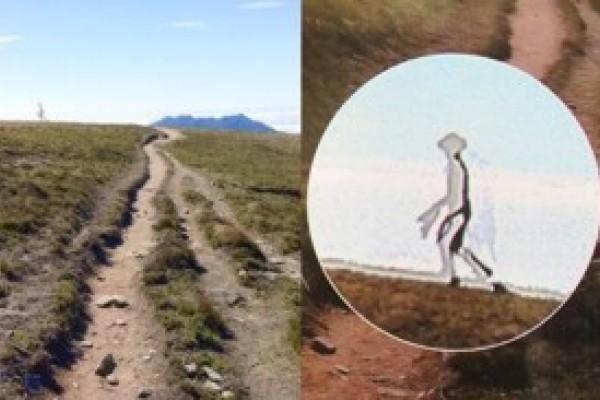 Apareció 'extraterrestre' caminando en Taiwan