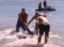 Turista británico lucha contra un tiburón para alejarlo de los niños