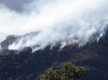 LA PAMPA: Continúan los incendios en la provincia con más de 800 mil hectáreas quemadas